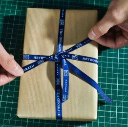 SMALL Gift wrapping in progress ii