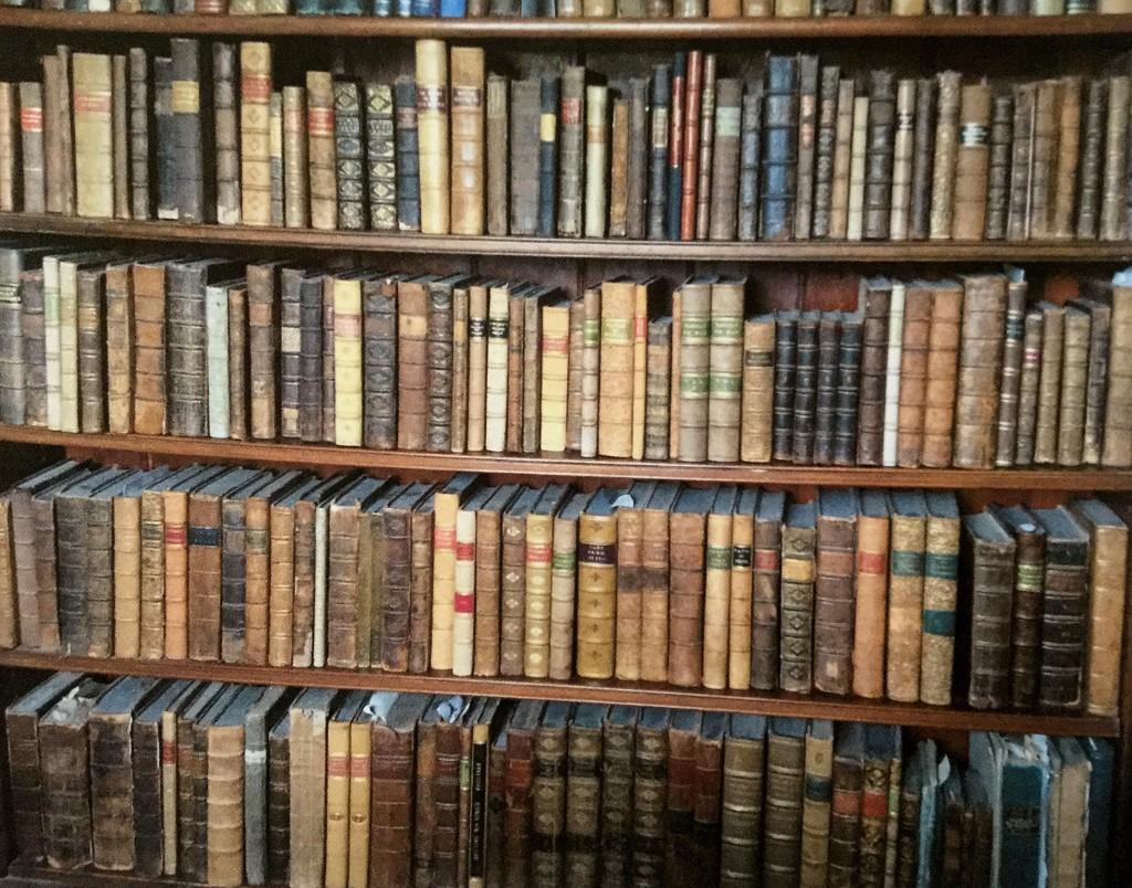 Ken Spelman Books Ltd shop photo